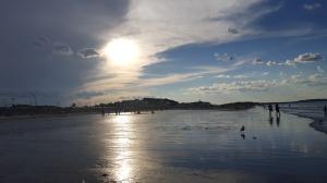 sunset, Paragon Park, Nantasket Beach, 4th of July, S. A. Young
