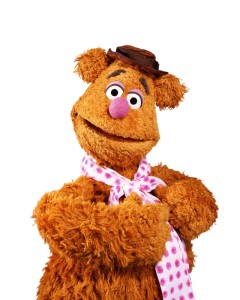 clutter, closet, packing, travel, fall, seasonal, S. A. Young, Fozzie Bear, Muppets