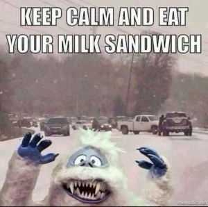 emergency, snow, weather, milk, bread, french toast, Monday, blogging, S.A. Young